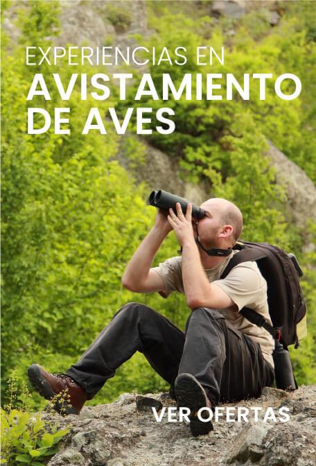 Promociones casanaretours.com